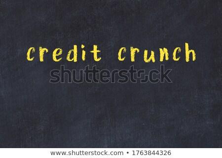hypothèque · crédit · jeune · femme · planification · avenir · argent - photo stock © tashatuvango