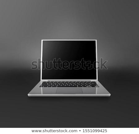 Internet Ads on Laptop in Conference Room. 3D. Stock photo © tashatuvango