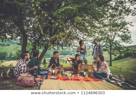 Family afternoon in summertime garden Stock photo © IS2