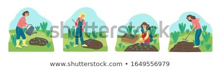 Nő kert természet dolgozik ásó vízszintes Stock fotó © IS2