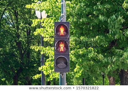 voetganger · controle · signaal · verkeer · lichten · Rood - stockfoto © phbcz