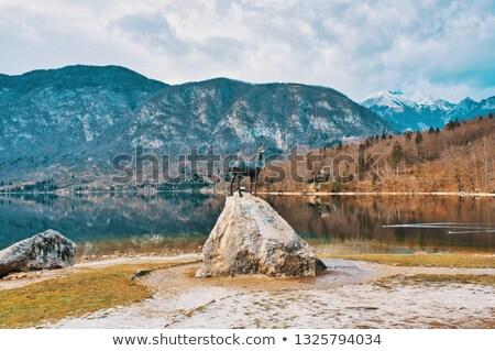 Heykel göl Slovenya görmek doğa manzara Stok fotoğraf © boggy