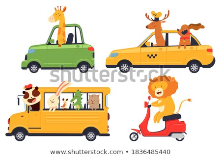 Cartoon souriant voiture de course pilote lapin Photo stock © cthoman
