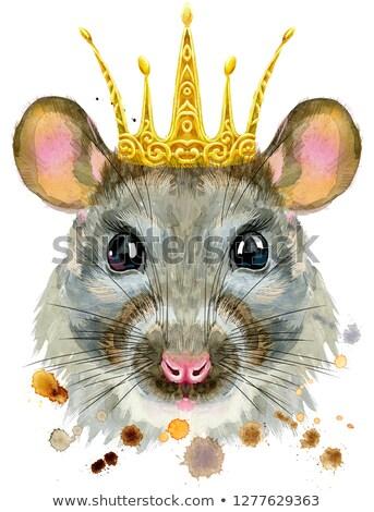 Acuarela retrato rata dorado corona cute Foto stock © Natalia_1947