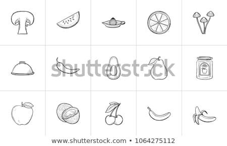 西瓜 · 手工繪製 · 素描 · 圖標 · 向量 - 商業照片 © rastudio