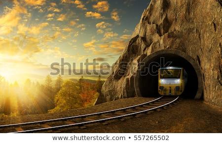 Pociągu tunelu scena ilustracja samochodu charakter Zdjęcia stock © bluering