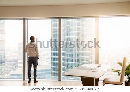 Jovem sério analista financeiro especialista olhando Foto stock © pressmaster