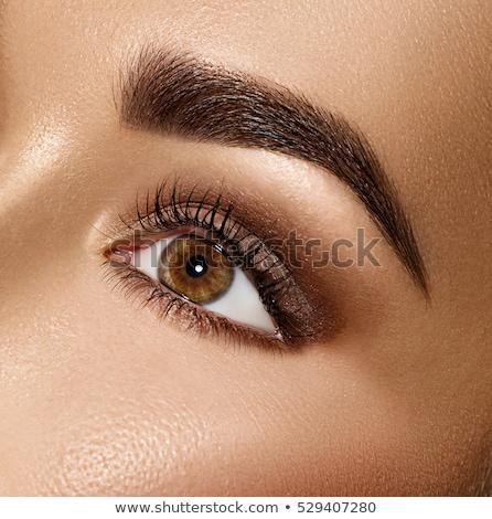 Perfect shape of eyebrows, brown eyeshadows and long eyelashes.  Stock photo © serdechny