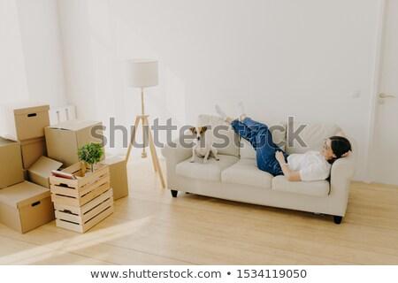 Female renter lies on white comfortable couch, raises crossed legs, poses with favourite dog, has ne Stock photo © vkstudio