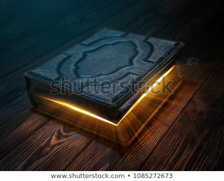 Gizli kitap iskelet anahtar eski kitap Stok fotoğraf © AlphaBaby