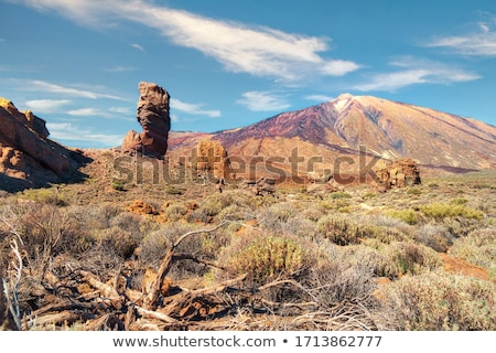 Rocks in the Teide National Park at Tenerife Stock photo © Musat