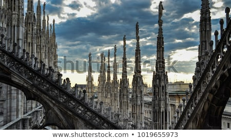 Milaan kathedraal detail gothic vierde Stockfoto © aladin66