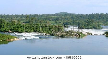waterside River Nile scenery near Jinja Stock photo © prill