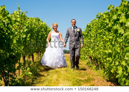couple posing in a vineyard stock photo © photography33