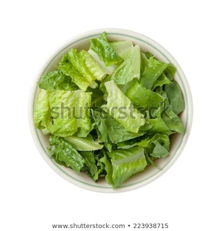 Kom sla voedsel groene diner salade Stockfoto © M-studio