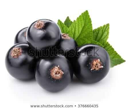 Negro grosella alimentos hoja hojas frescos Foto stock © Stocksnapper