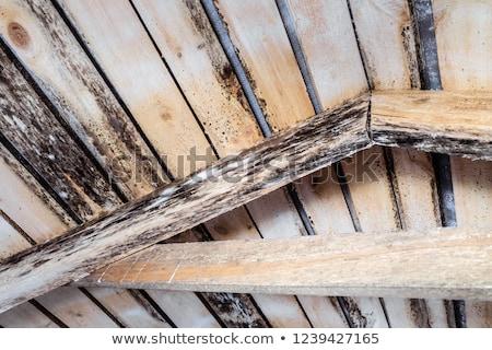 Zgniły drewna streszczenie struktura drewna projektu tle Zdjęcia stock © Taigi
