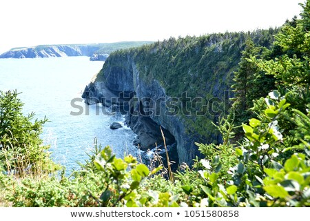 Crashing Waves on a Remote Coast Stock photo © wildnerdpix