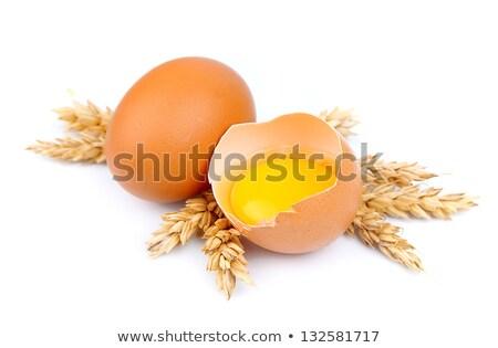 eggs and wheat cones  Stock photo © Masha