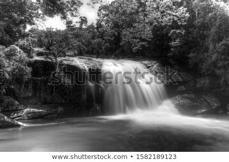 Stockfoto: The River In The Forest W Waterfalls  Hdr
