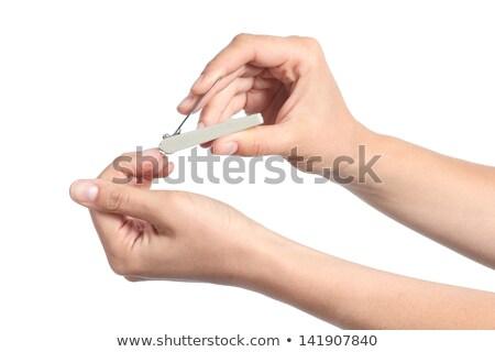 nő · vág · köröm · közelkép · manikűrös · kezek - stock fotó © jaycriss