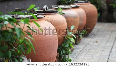 Vintage ceramic water jar decorated green garden Stock photo © punsayaporn