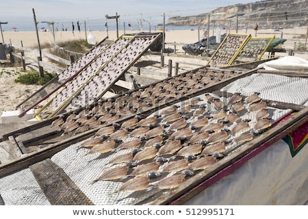 dried fish in nazare stock photo © elxeneize