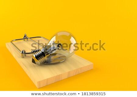 isolado · mouse · armadilha · branco · queijo - foto stock © jonnysek