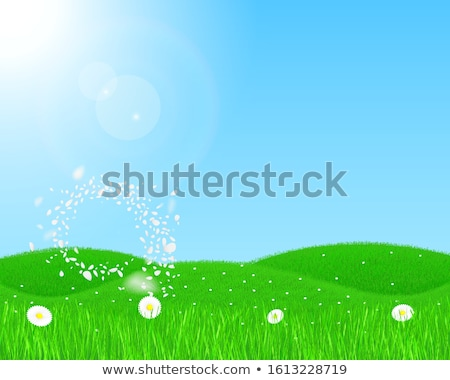 abstract landscape of sunny hills with green fields and blossom stock photo © taiga