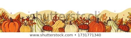 Halloween confine zucche foglie immagine illustrazione Foto d'archivio © Irisangel