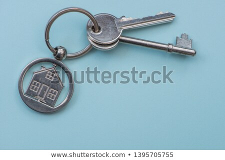Optimism Concept. Keys with Keyring. Stock photo © tashatuvango
