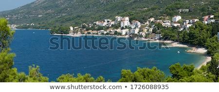 Pino alberi rock Croazia cielo albero Foto d'archivio © master1305