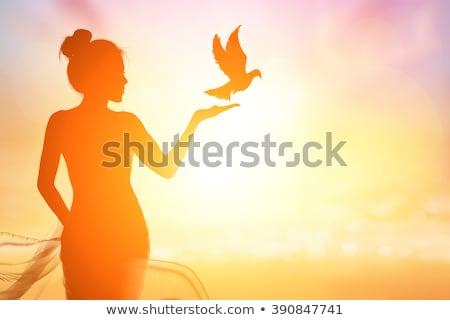 Kinder · Vogelkäfig · Sonnenuntergang · Illustration · Natur · Vogel - stock foto © adrenalina