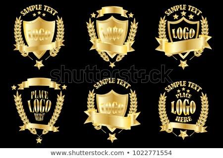 üres arany pajzs fém kitűző izolált Stock fotó © orensila