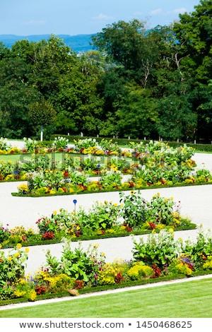 宮殿 · 庭園 · オーストリア · 花 · 建物 - ストックフォト © phbcz