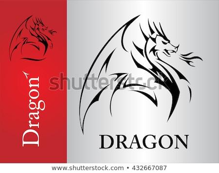 черный дракон крыло элегантный хвост Сток-фото © HunterX