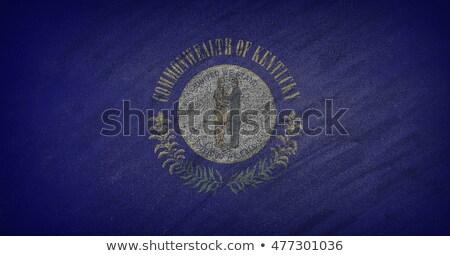 Kentucky bandeira pintado giz lousa Foto stock © asturianu