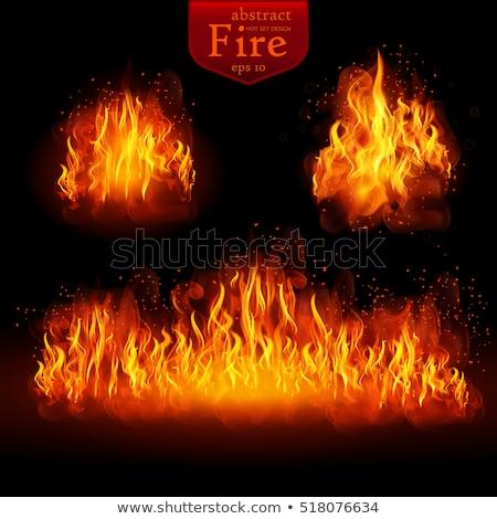 Realistic fire flames set. EPS 10 Stock photo © beholdereye