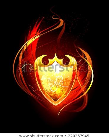 ardente · asas · pintado · preto · fogo · anjo - foto stock © blackmoon979