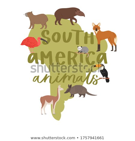 Map of earth animals isolated. Continents and beast. geography F Stock photo © popaukropa