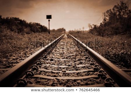 Oude spoorweg track grasveld reizen vintage Stockfoto © stevanovicigor