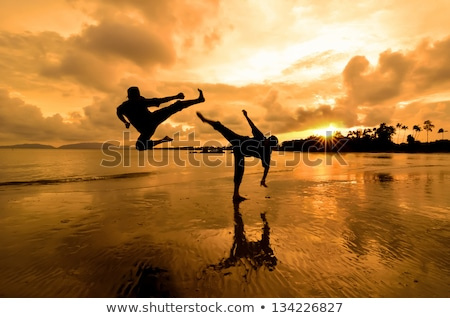 Capoeira harcművészet naplemente illusztráció férfi Stock fotó © adrenalina