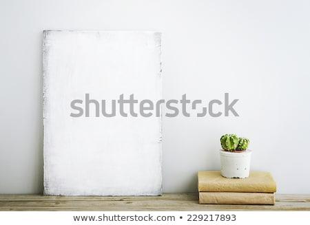 Fa tábla kaktusz növény illusztráció fa háttér Stock fotó © bluering