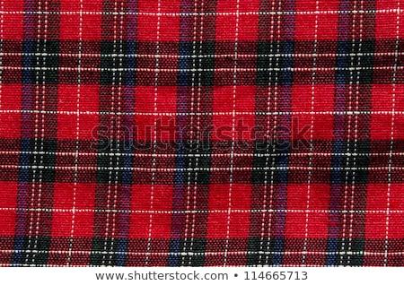 Close up checked fabric pattern texture Stock photo © szefei