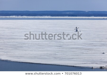 Snowman on the Lake Superior in Duluth Stock photo © benkrut