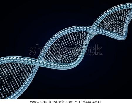 Közelkép átló DNS lánc fekete 3D Stock fotó © user_11870380