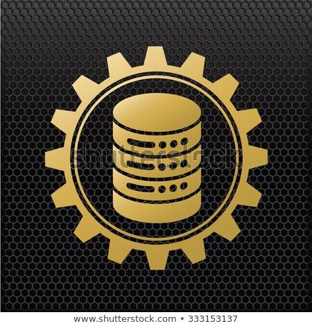 website protection concept golden gears stock photo © tashatuvango