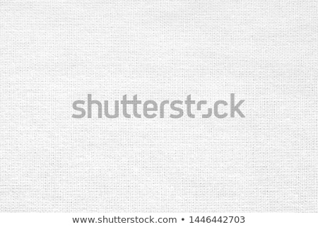 Retro Fabric Background Stock photo © kostins