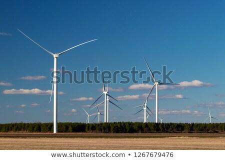 Moinho de vento agrícola fazenda EUA Texas céu Foto stock © asturianu