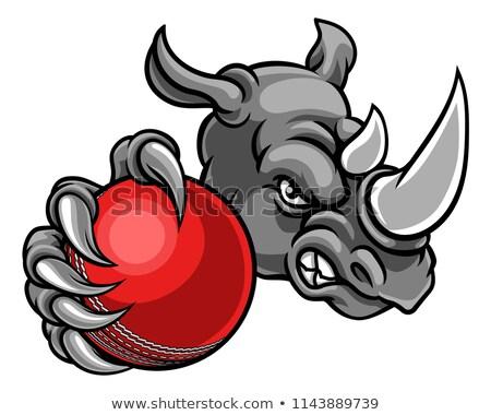 Rinoceronte críquete bola animal esportes Foto stock © Krisdog